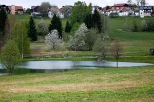 neuschoenau-see1